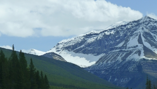 one of the six major glaciers at Columbia Icefield