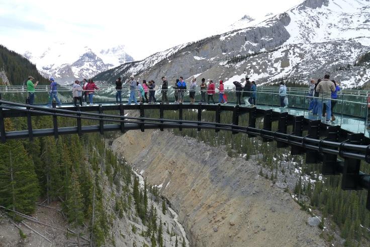 glass-bottom portion of observation platform